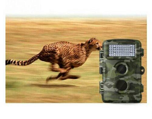 กล้องแอบถ่ายสัตว์